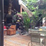 タイで貸し店舗を探す時のコツとは