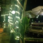 パタヤ旅行でのオススメ!海老釣りの出来るレストラン:タイ移住FP