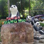 タイのチェンマイ動物園の行き方!パンダもいるよ:海外旅行FPのブログ