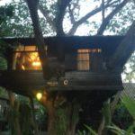 タイ・チェンマイのオススメなホテル!木の上の家に泊まれるツリーハウス:海外旅行FP
