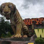 タイの動物園シラチャのタイガーズーを体験レポート!バンコクやパタヤから日帰り可能