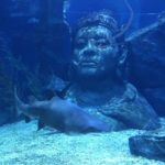 バンコクのサイヤムパラゴンの水族館オーシャンワールドが予想外に凄い!行き方と内容を説明